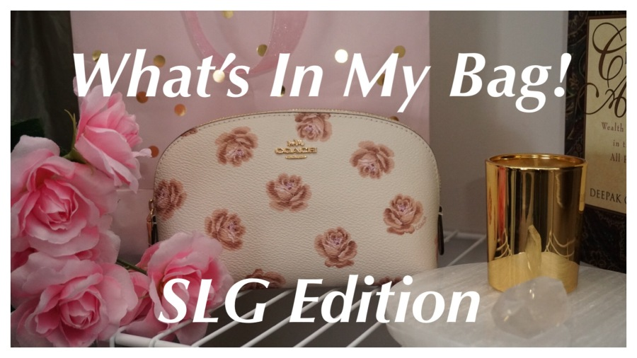 Cosmetic Case 17 by Coach | What's In My Bag: SLG Edition | TheLuxAngel